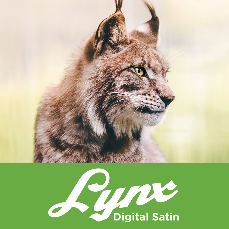 Lynx Digital Satin