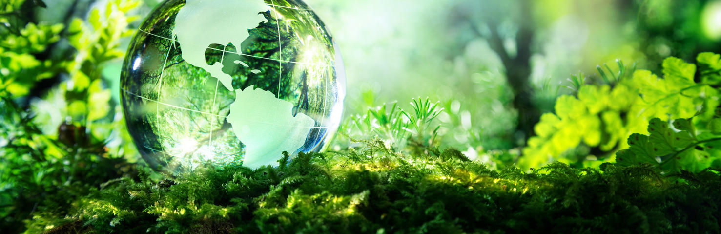 Domtar Sustainability Policies