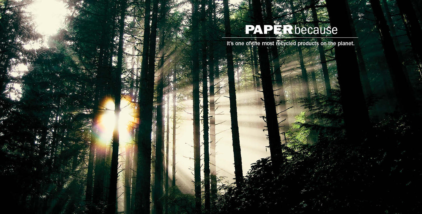 PAPERbecause