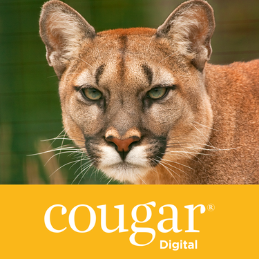 CD98 Cougar Digital Product Image