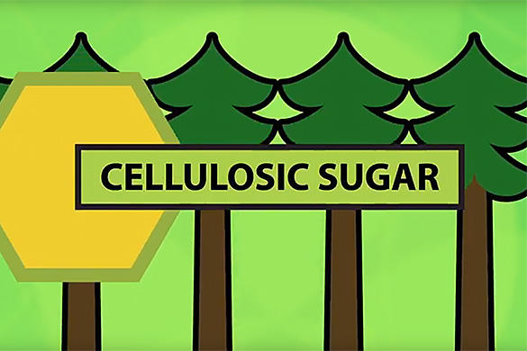 Cellulosic sugars video