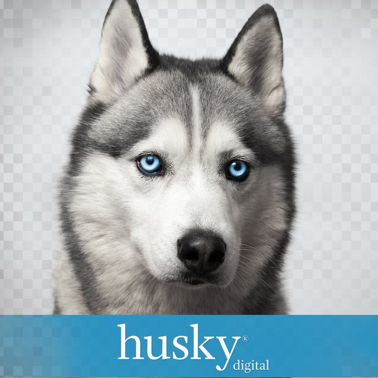 Husky Digital Product Image