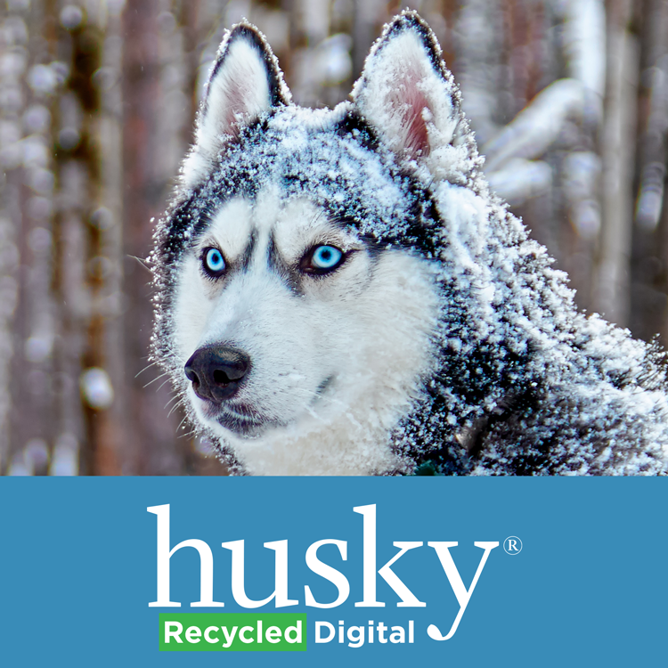 HRD94 Husky Recycled Digital Product Imaeg
