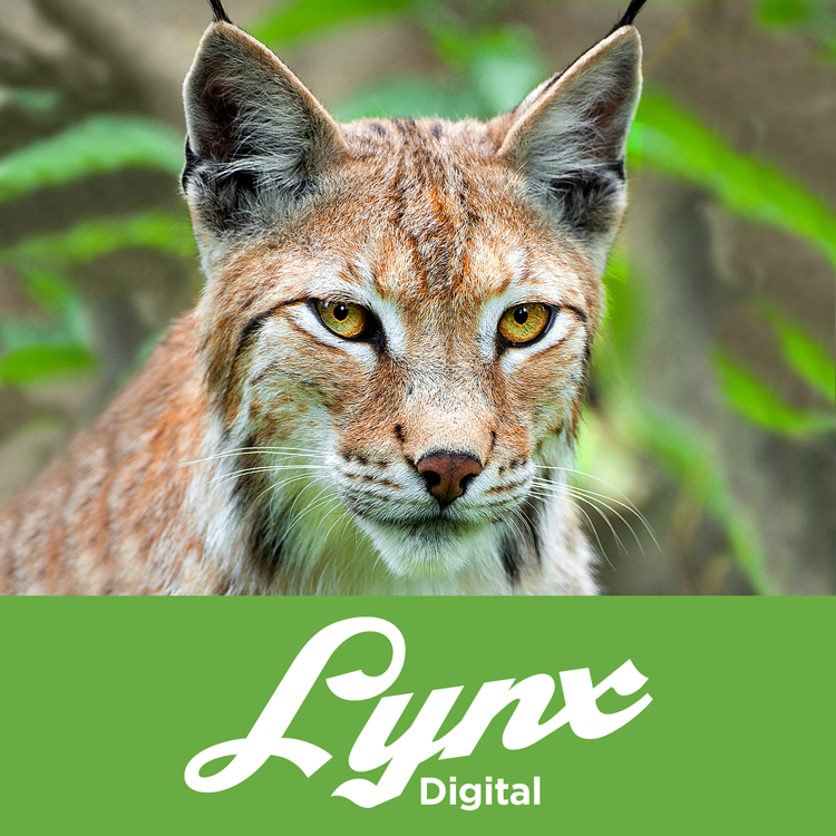 Lynx Digital Product Image